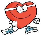 Quel est le nom de la paroi musculaire qui divise le cœur ?