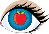 La membrane assurant la protection du globe oculaire s'appelle ?