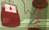 Combien de litres de sang contient le corps humain chez un adulte ?